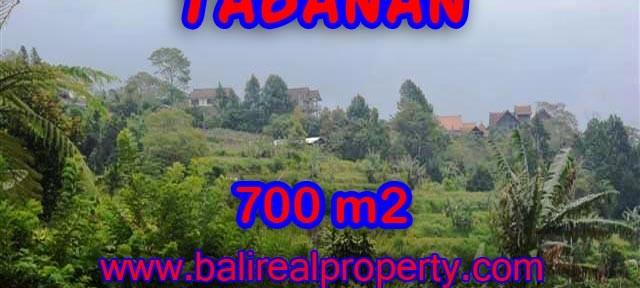 TANAH DIJUAL DI BALI, MURAH DI TABANAN HANYA RP 1.950.000 / M2