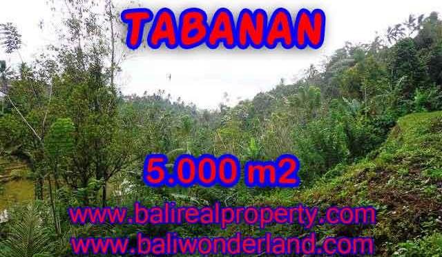 TANAH DIJUAL DI TABANAN RP 270.000 / M2 - TJTB139