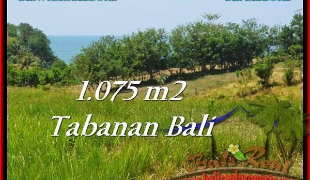 TANAH di TABANAN BALI DIJUAL MURAH 10.75 Are di Tabanan Selemadeg