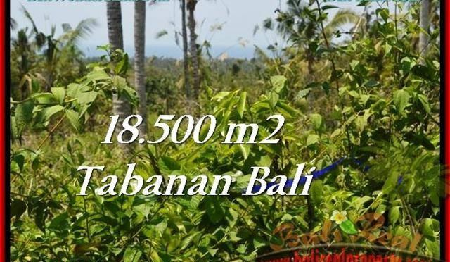 TANAH MURAH di TABANAN BALI TJTB232