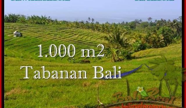 DIJUAL TANAH di TABANAN BALI Untuk INVESTASI TJTB237