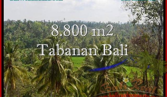 DIJUAL TANAH di TABANAN BALI Untuk INVESTASI TJTB238
