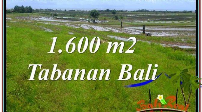 INVESTASI PROPERTI, DIJUAL TANAH MURAH di TABANAN BALI TJTB310