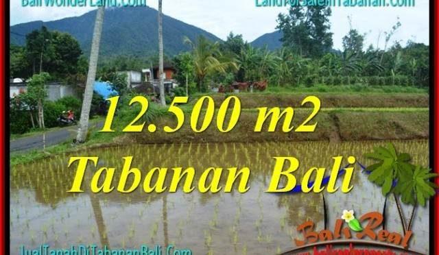 INVESTASI PROPERTY, TANAH MURAH di TABANAN BALI DIJUAL TJTB317