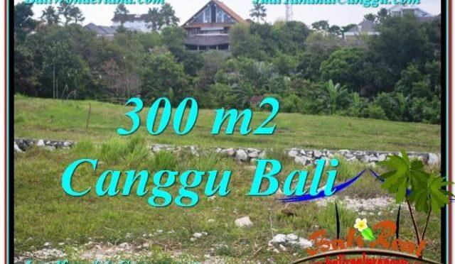 DIJUAL TANAH di CANGGU BALI 3 Are di Canggu Umalas