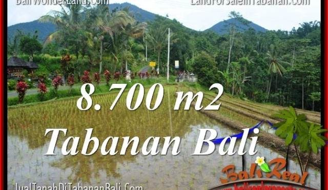 TANAH MURAH DIJUAL di TABANAN BALI 8,700 m2 di Tabanan Penebel