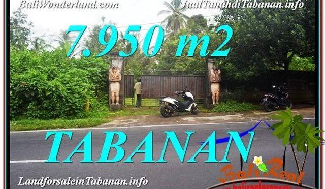 JUAL TANAH MURAH di TABANAN TJTB331