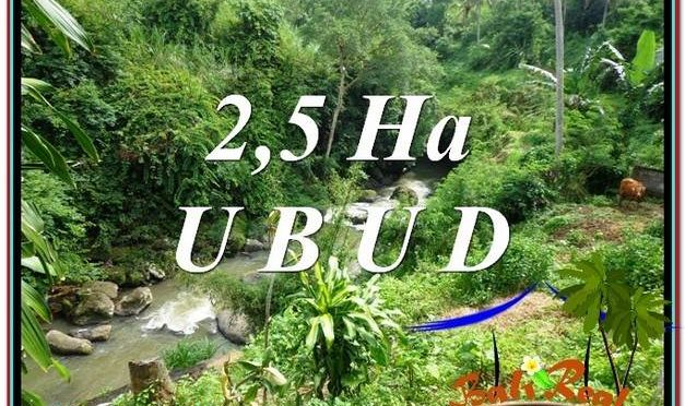 DIJUAL MURAH TANAH di UBUD BALI 260 Are di Sentral Ubud