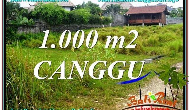 TANAH MURAH di CANGGU 1,000 m2 View sawah, sungai, laut