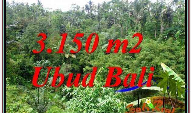 TANAH di UBUD JUAL 32 Are View Tebing dan Sungai
