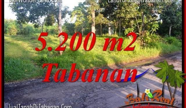 INVESTASI PROPERTI, DIJUAL MURAH TANAH di TABANAN TJTB334