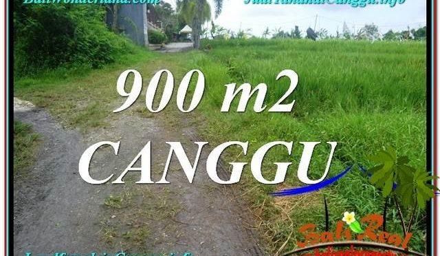 TANAH DIJUAL MURAH di CANGGU BALI 9 Are di Canggu Batu Bolong