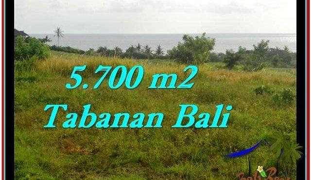TANAH di TABANAN JUAL MURAH 5,700 m2 View sawah, laut dan gunung