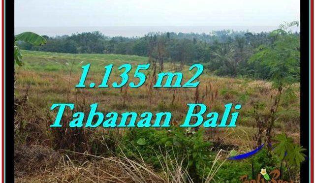 DIJUAL TANAH di TABANAN TJTB253