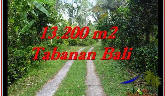 JUAL MURAH TANAH di TABANAN BALI 132 Are View kebun dan laut