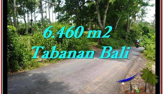 TANAH di TABANAN BALI DIJUAL MURAH TJTB256