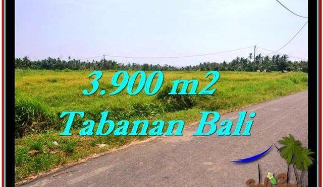 JUAL TANAH MURAH di TABANAN Untuk INVESTASI TJTB258