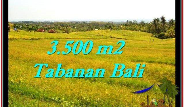 INVESTASI PROPERTI, TANAH MURAH DIJUAL di TABANAN BALI TJTB259