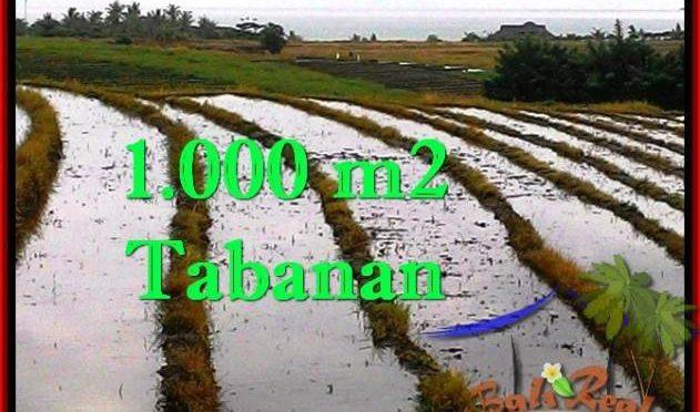 TANAH MURAH JUAL di TABANAN BALI 1,000 m2 View sawah, gunung dan laut