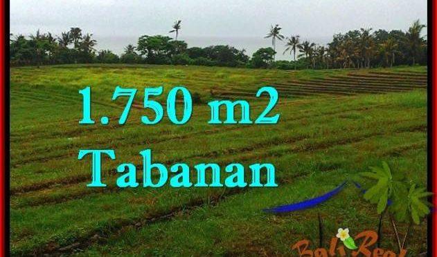 INVESTASI PROPERTY, JUAL TANAH MURAH di TABANAN TJTB262