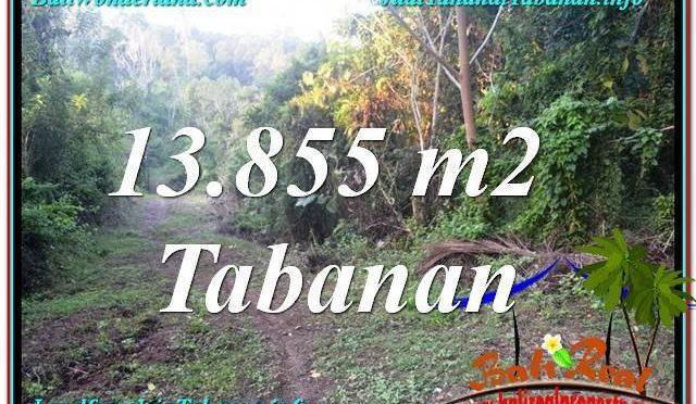 JUAL TANAH di TABANAN 13,855 m2 di Tabanan Selemadeg