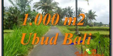 TANAH DIJUAL MURAH di UBUD BALI 1,000 m2 di Ubud Tampak Siring