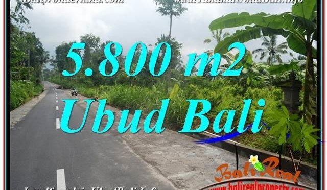 TANAH MURAH DIJUAL di UBUD BALI Untuk INVESTASI TJUB637