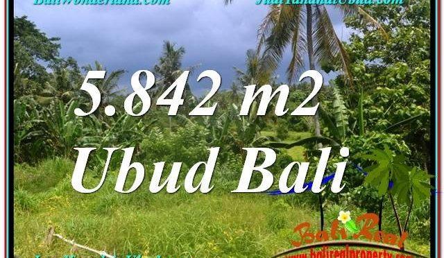 INVESTASI PROPERTY, TANAH MURAH di UBUD BALI TJUB638