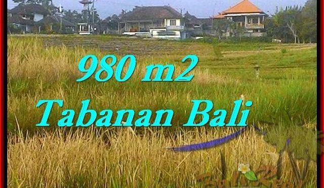 TANAH di TABANAN BALI DIJUAL MURAH 980 m2 di Tabanan Selemadeg