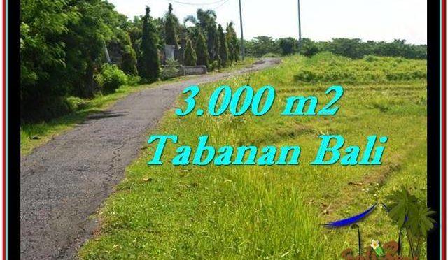 TANAH di TABANAN BALI DIJUAL MURAH TJTB246