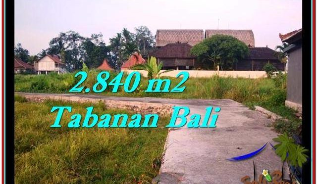 JUAL TANAH MURAH di TABANAN Untuk INVESTASI TJTB247