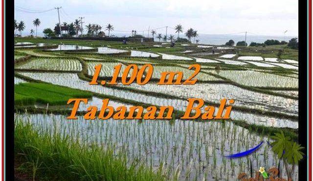 JUAL TANAH MURAH di TABANAN Untuk INVESTASI TJTB248
