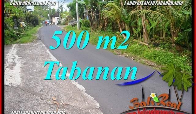 TANAH MURAH JUAL TABANAN 5 Are View kebun