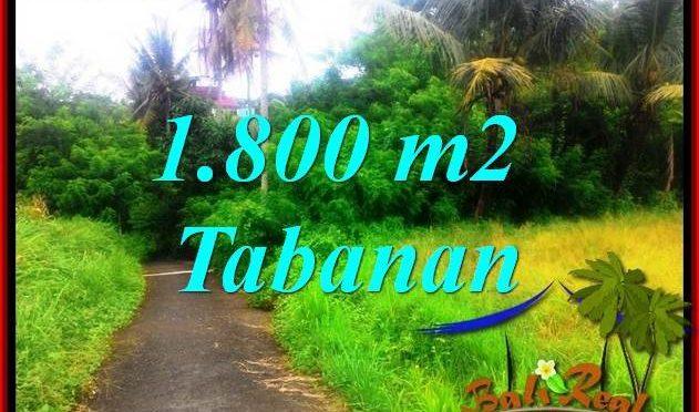 JUAL MURAH TANAH di TABANAN BALI 1,850 m2 View sawah